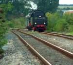 br-50/32125/dr-50-3708-0-mit-dem-dlr DR 50 3708-0 mit dem DLr 37193 von Karsdorf nach Freyburg, bei Kreuzungshalt in Laucha (Unstrut); 12.09.2009